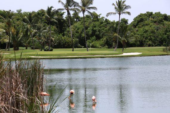 Was die Löffelliste, Golf und die Dominikanische Republik gemeinsam haben