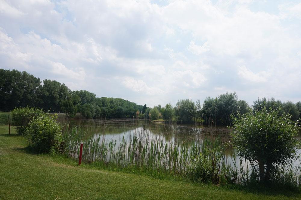 Golfen in der Stadt ! In der Galopprennbahn München Riem
