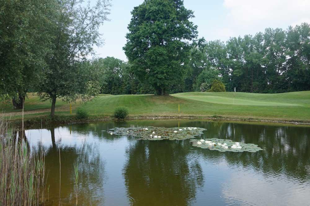 Golfen In Der Stadt In Der Galopprennbahn München Riem