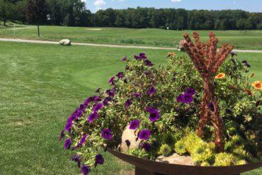 Blumen am Golfclub Rheinfelden (CH)